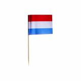 10 x  500 Deko-Picker 8 cm Niederlande