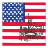12 x  50 Servietten, 3-lagig 1/4-Falz 33 cm x 33 cm America