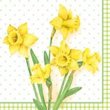 6 x  100 Servietten, 3-lagig 1/4-Falz 33 cm x 33 cm Spring Blossoms