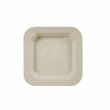 10 x  50 Fingerfood - Teller, Zuckerrohr pure eckig 13 cm x 13 cm natur