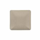 10 x  50 Fingerfood - Teller, Zuckerrohr pure eckig 6,5 cm x 6,5 cm natur