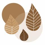 10 x  20 Servietten, 3-lagig 1/4-Falz 40 cm x 40 cm natur Graphic Leaves