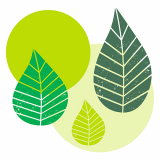 10 x  20 Servietten, 3-lagig 1/4-Falz 40 cm x 40 cm grün Graphic Leaves