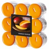 10 x  18 Flavour by GALA Duftlichte Ø 37,5 mm · 16,6 mm pfirsich - Mango-Papaya