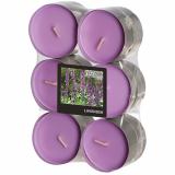 12 x  12 Flavour by GALA Maxi Duftlichte Ø 58 mm · 24 mm violett - Lavender