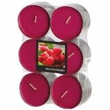 12 x  12 Flavour by GALA Maxi Duftlichte Ø 58 mm · 24 mm weinrot - Wild Raspberry